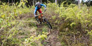 mountainbikeschule-wildschoenau